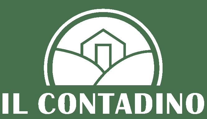 Romualdo Cardoni